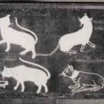 cat-book-poems-siamese-cat
