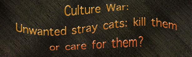 Cutlure Wars America