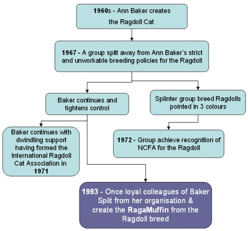 Ragamuffin history charted
