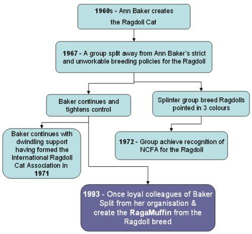 Ragamuffin history charted