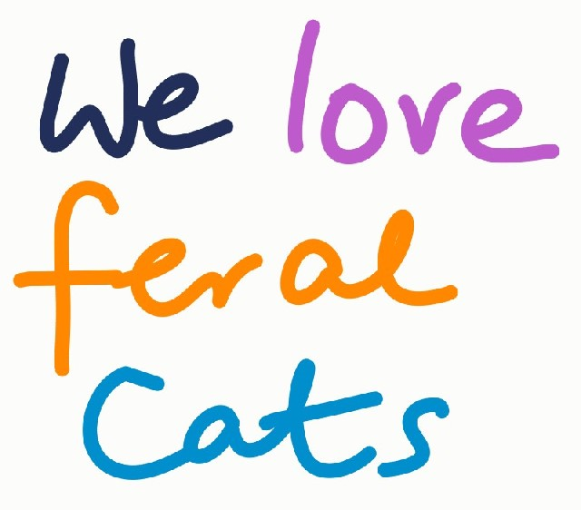 feral cats essay Free spay/neuter for homeless stray and feral cats.