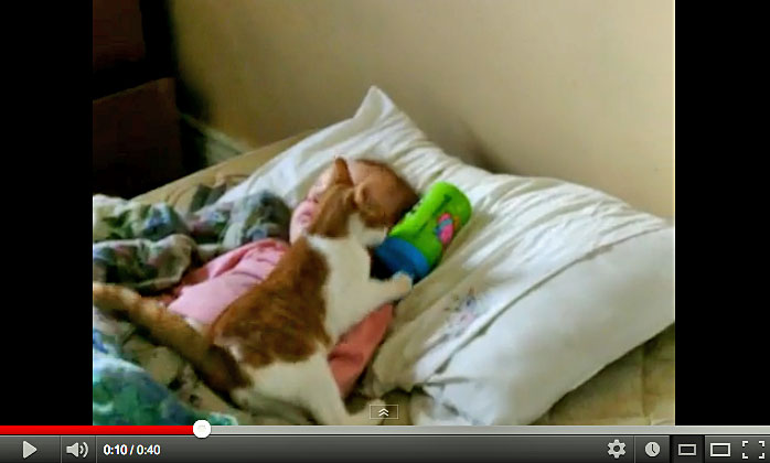 Cat Wants To Snuggle Up To Baby