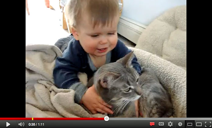 Toddler Loves His Cat