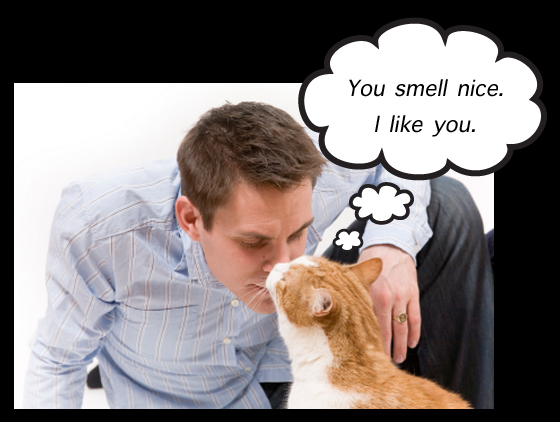 Cat Smells Man