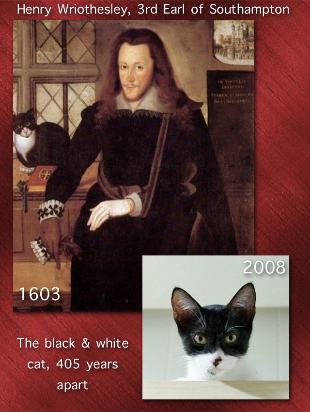 Black and white cats 405 years apart. The 2008 cat lives in Brazil and the photo is by Giane Portal.