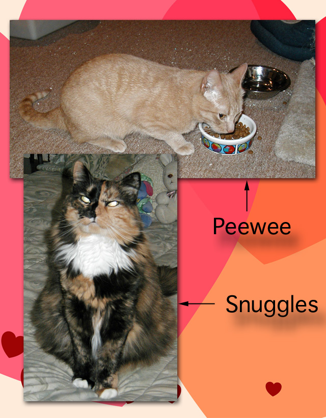 Peewee and Snuggles