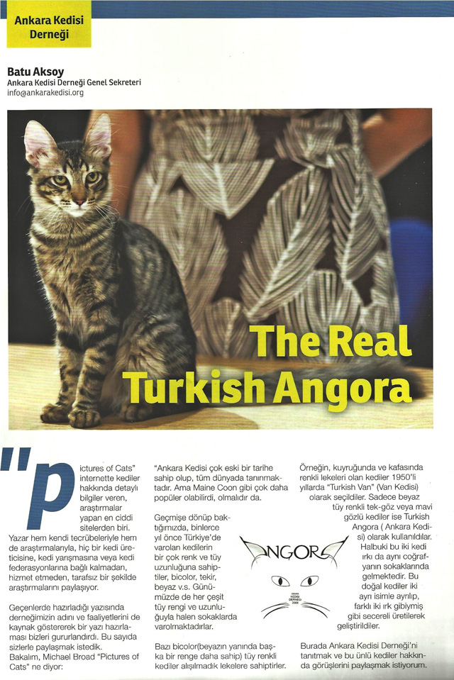 The Real Turkish Angora magazine article