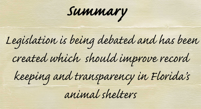 Laws affecting Florida's animal shelters