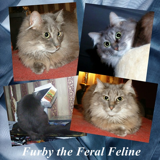 Furby Collage for article