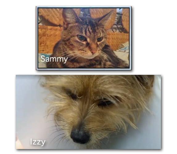 Sammy and Izzy