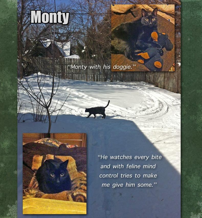 Monty - Ruth's Feline Companion