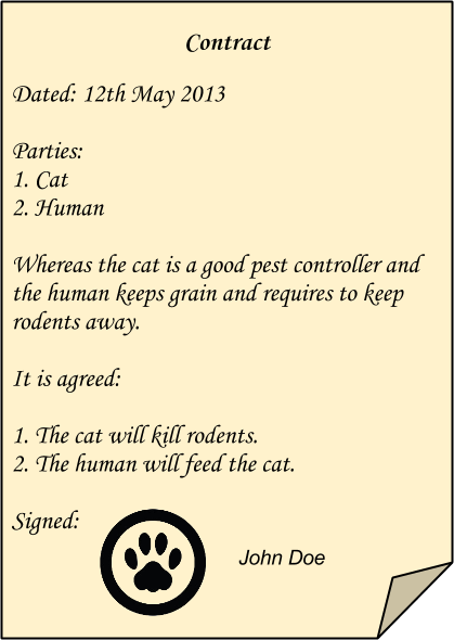 Cat Contract