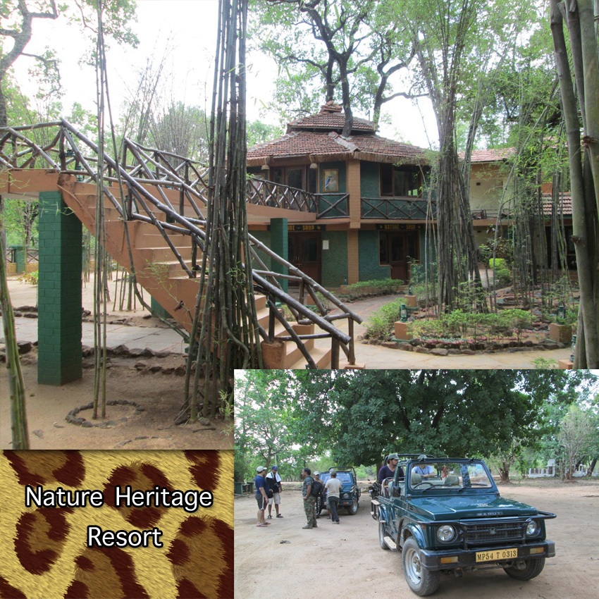 Bengal tiger resort hotel at tiger reserve