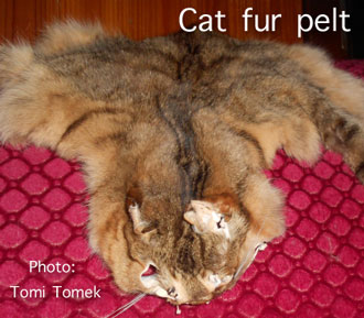 Cat fur pelt Switzerland