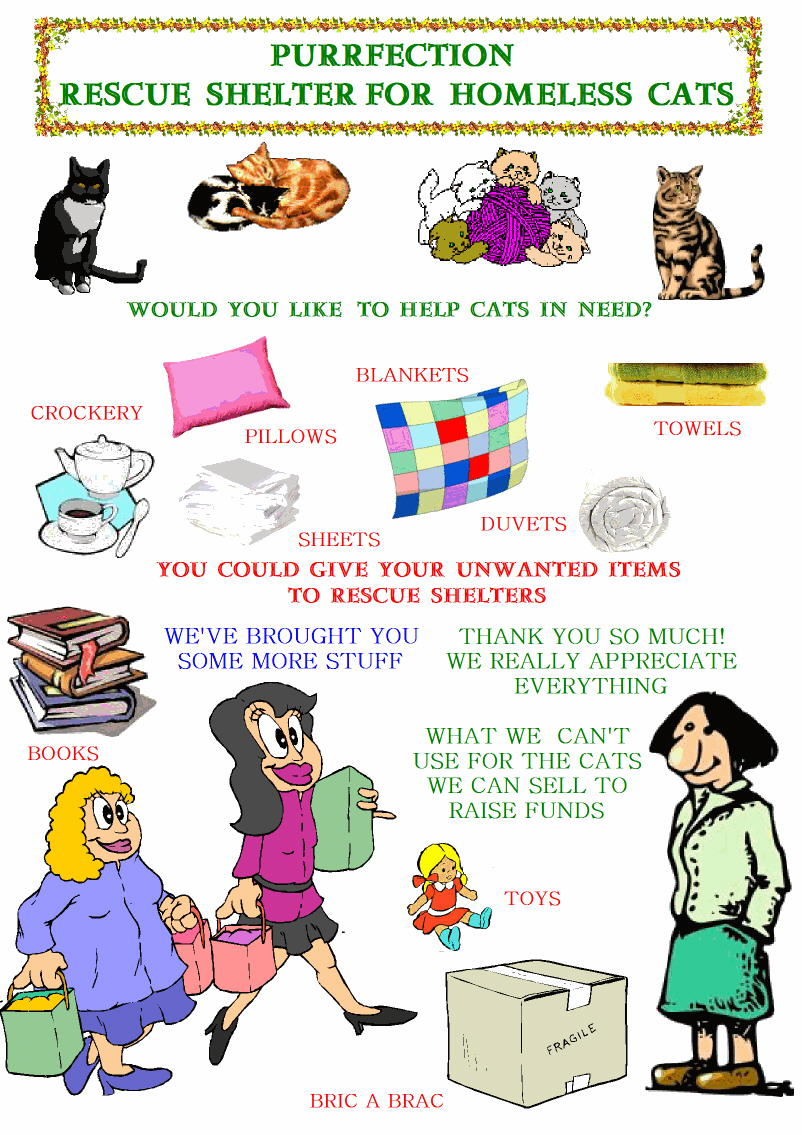 Giving for needy cats