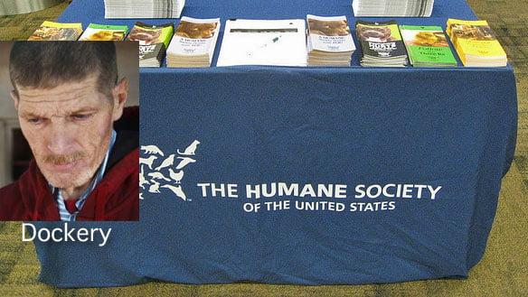 Humane Society Kill Cat