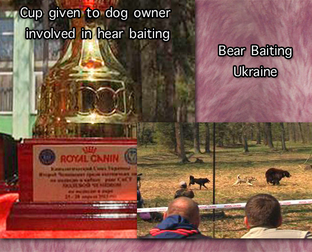 Royal Canin involved in bear baiting