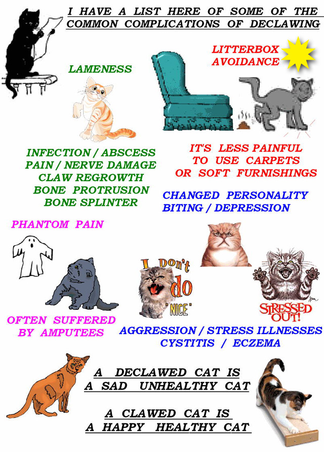 Litter aversion by declawed cat