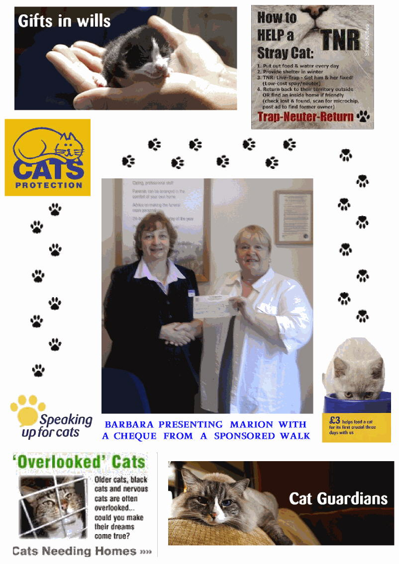 Cats Protection Volunteer Marion