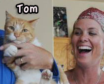 Tom a cat who returned home