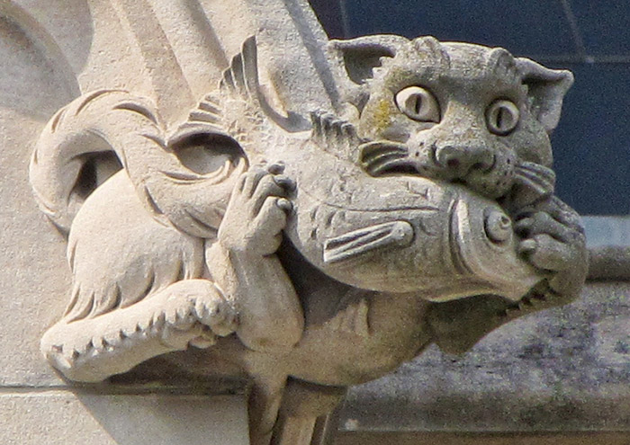 cat grotesque washington national cathedral