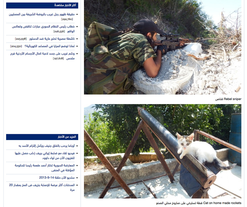 Kitten in Syria sitting on a rocket launcher