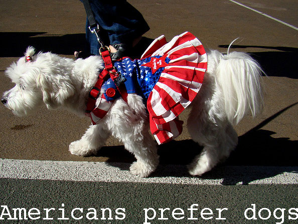 Americans prefer dogs to cats