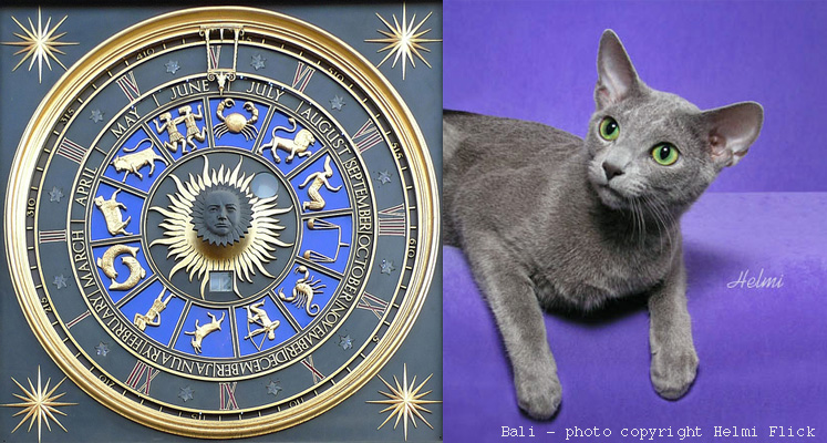 Pet Astrology