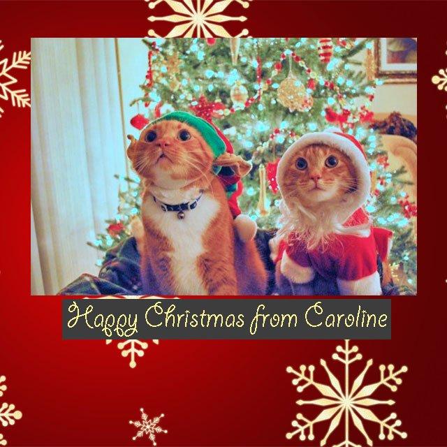 Happy Christmas from Caroline