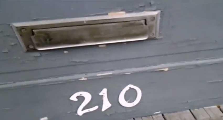 Cat Versus Postman