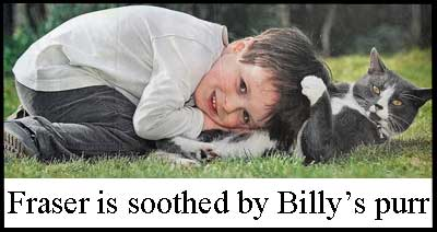 Cat soothes and calms autistic boy