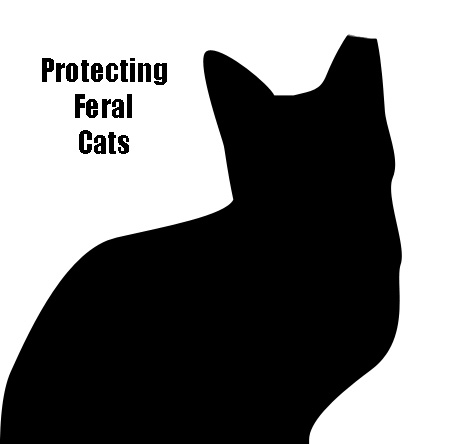Protecting feral cats