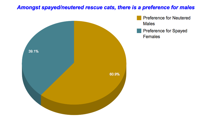 rescue-cat-adoptions-statistics-3