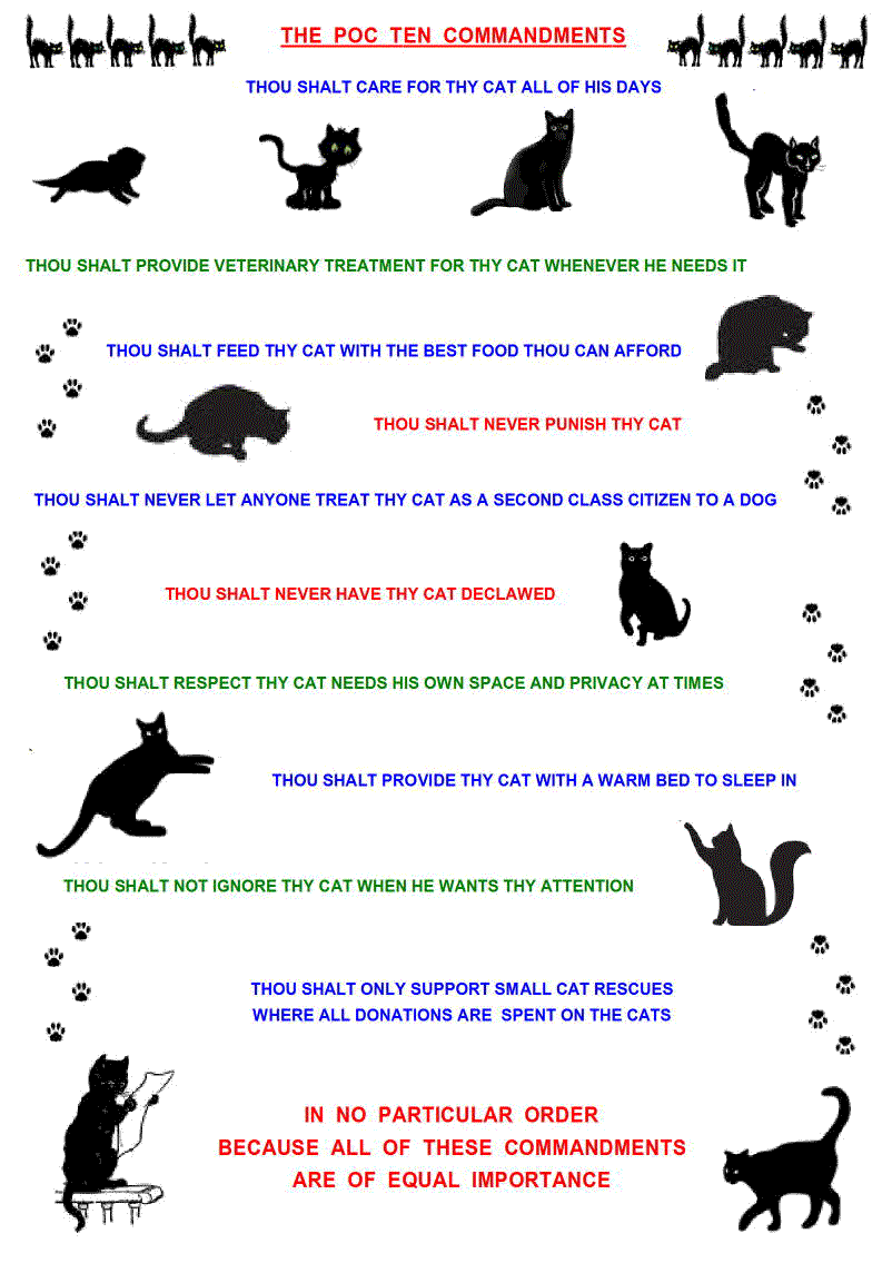 ten commandments for cat caretaking and welfare