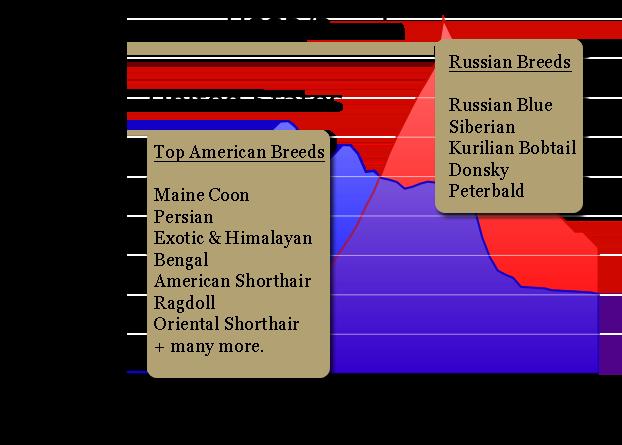 american-versus-russian-cat-breeds