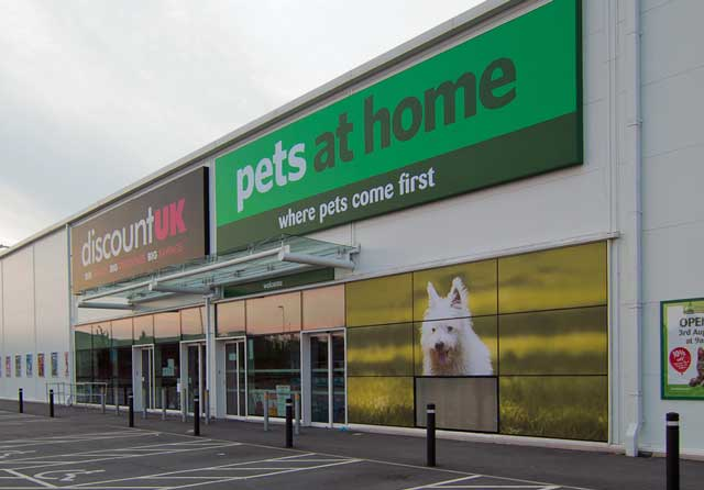 Pets at home an outlet for adopting rescue cats