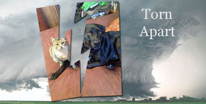 families including pets torn apart by the Arkansas tornadoes April 2014