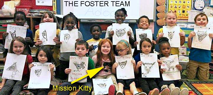 kindergarten kids foster a rescue kitten