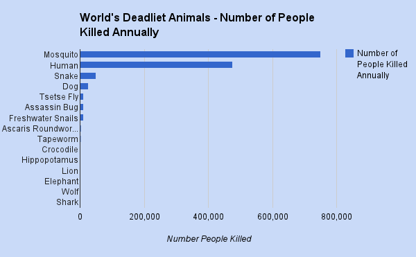 World's deadliest animals