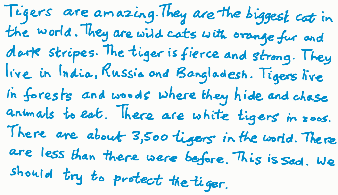 Animal tiger essay