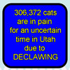 declawpainthumb
