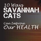 savannah cat improves our health