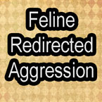 Feline redirected aggression