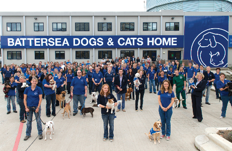 Dog Rescue Homes London