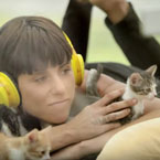 Kitten Therapy