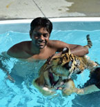 Zoos swim with a tiger cub money maker