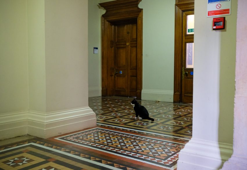 Palmerston in the Foreign and Commonwealth Office wanting some peace and quiet finds it away from the public.