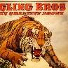 Circus tiger Ringling Bros