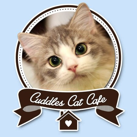 Cuddles Cat Cafe
