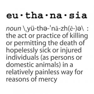 Convenience euthanasia